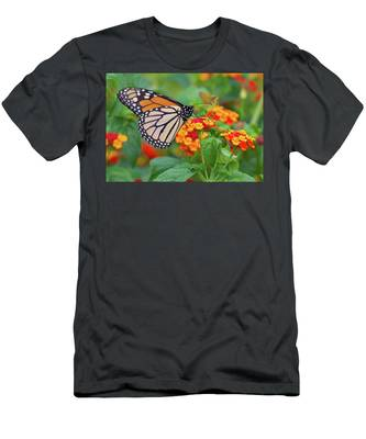 Royal Butterfly Men's T-Shirt (Athletic Fit)