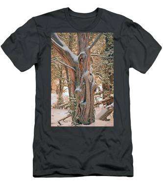 Snowy Dead Tree Men's T-Shirt (Athletic Fit)