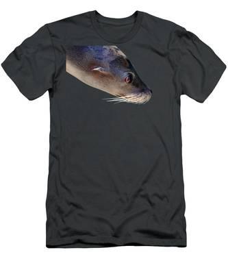 Pinniped T-Shirts