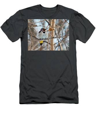 Yellow-shafted Northern Flicker Staying Warm Men's T-Shirt (Athletic Fit)