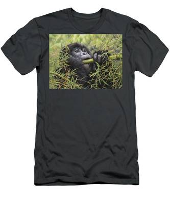 Young Mountain Gorilla Men's T-Shirt (Athletic Fit)