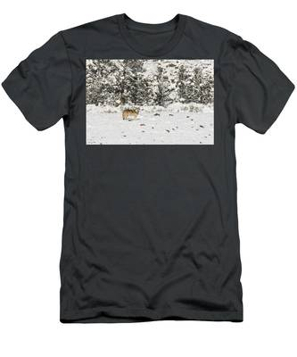 W16 Men's T-Shirt (Athletic Fit)