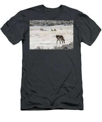 W19 Men's T-Shirt (Athletic Fit)