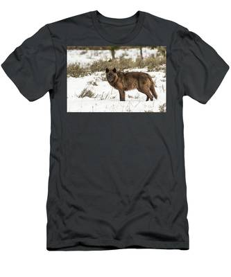 W7 Men's T-Shirt (Athletic Fit)