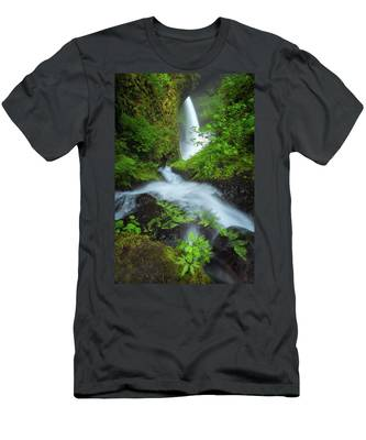 Designs Similar to Fern Falls by Darren White