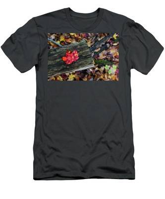 Men's T-Shirt (Athletic Fit) featuring the photograph The Reason They Call It Fall by Brad Wenskoski