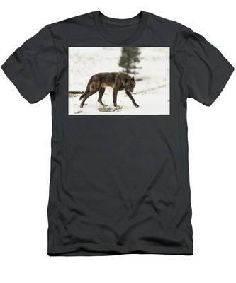 W42 Men's T-Shirt (Athletic Fit)