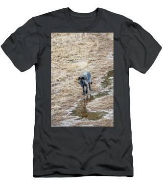 W51 Men's T-Shirt (Athletic Fit)