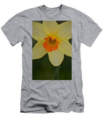 Daffodilicious Men's T-Shirt (Athletic Fit)