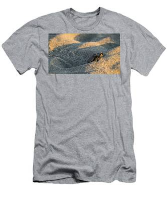Brave Beginnings Sea Turtle Hatchling Delray Beach Florida Men's T-Shirt (Athletic Fit)