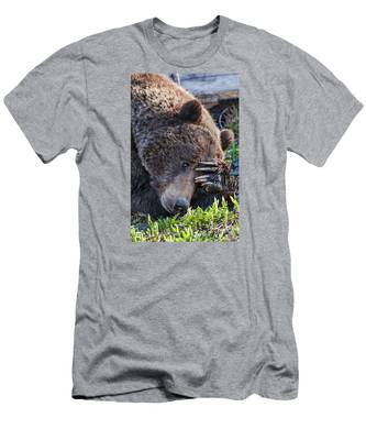 Lazy Bear Men's T-Shirt (Athletic Fit)