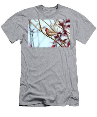 Little Finch Men's T-Shirt (Athletic Fit)