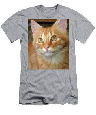 Portrait Of A Cat Men's T-Shirt (Athletic Fit)