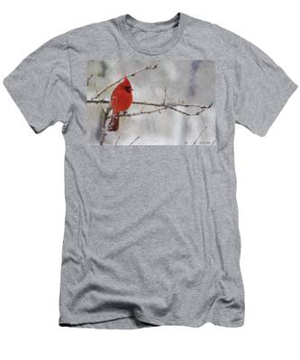 Red Bird Of Winter Men's T-Shirt (Athletic Fit)