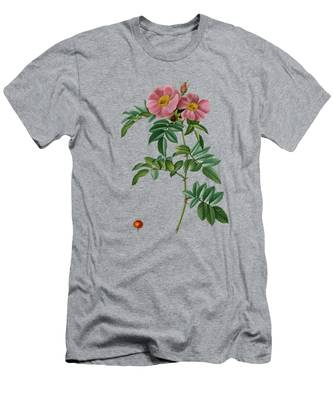 Redoute T-Shirts