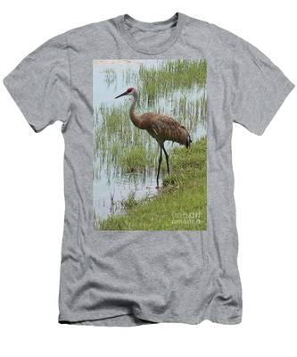Sandhill In The Marsh Men's T-Shirt (Athletic Fit)