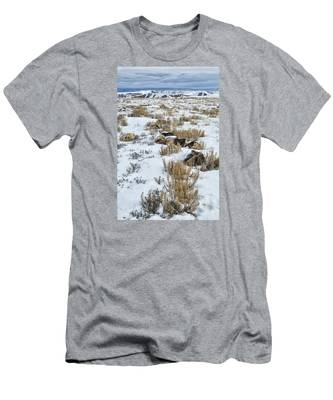 Winter Light In The High Desert Men's T-Shirt (Athletic Fit)