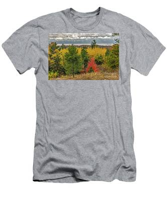 Vibrant Shades Of Red, Green, And Yellow Leaves Men's T-Shirt (Athletic Fit)