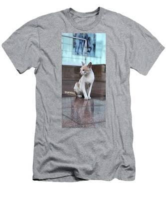 Cute Cat T-Shirts