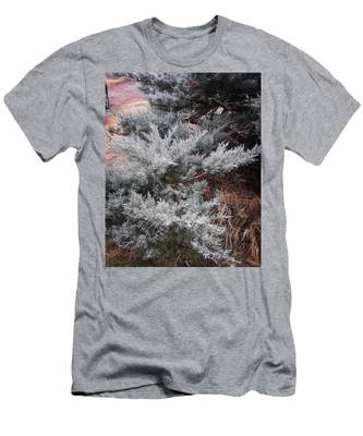 Cedar T-Shirts