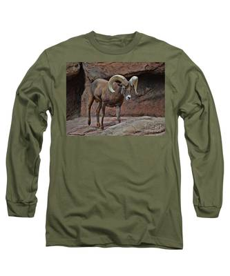 Desert Bighorn Sheep Ram I Long Sleeve T-Shirt