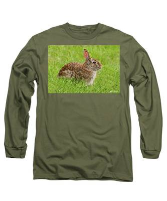 Rabbit In A Grassy Meadow Long Sleeve T-Shirt