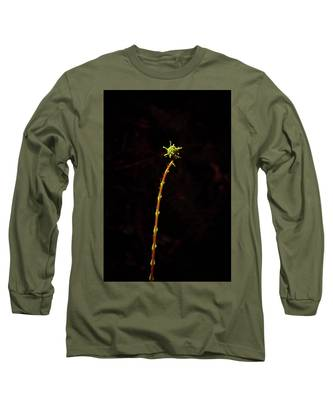 Fiddlefern Superstar Long Sleeve T-Shirt