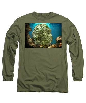 Ocean With Its Life Underground Long Sleeve T-Shirt