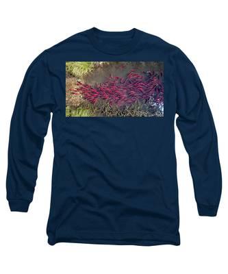Spawning Kokanee Salmon Long Sleeve T-Shirt