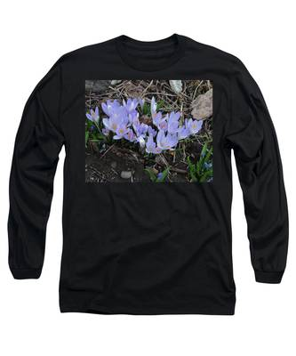 Early Crocuses Long Sleeve T-Shirt