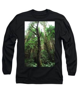 Groovin With The Redwoods Long Sleeve T-Shirt