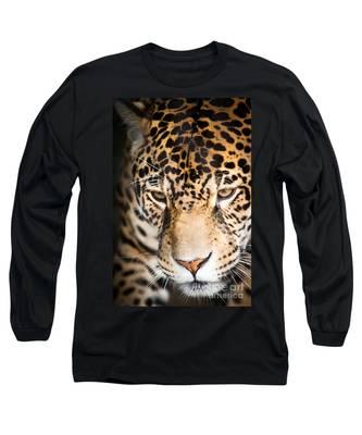 Leopard Resting Long Sleeve T-Shirt