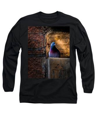 Pigeon Of The City Long Sleeve T-Shirt