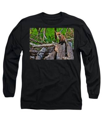 Baby Fox Long Sleeve T-Shirt