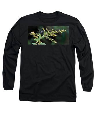 Entrapped Long Sleeve T-Shirt