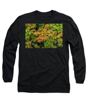 Various Stages Of Fall Color On Maple Leaves Long Sleeve T-Shirt