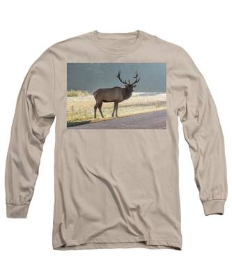 Bull Elk Watching Long Sleeve T-Shirt