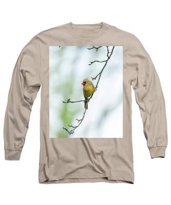 Out On A Limb 2 Long Sleeve T-Shirt