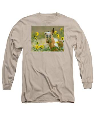 Sunflower Thief Long Sleeve T-Shirt