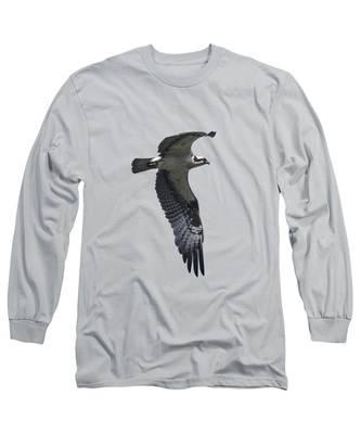 Designs Similar to Osprey In Flight 2