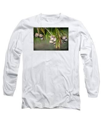 Bald Cypress Tree Seed Pods Long Sleeve T-Shirt