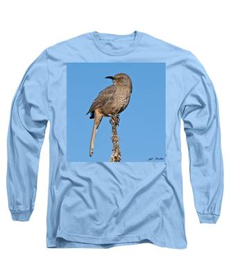 Curve-billed Thrasher Long Sleeve T-Shirt