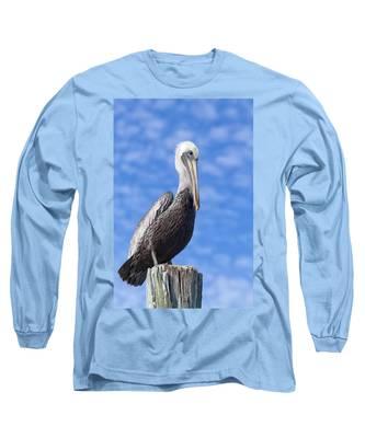Florida Brown Pelican Long Sleeve T-Shirt