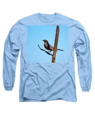 Robin Taking A Break Long Sleeve T-Shirt