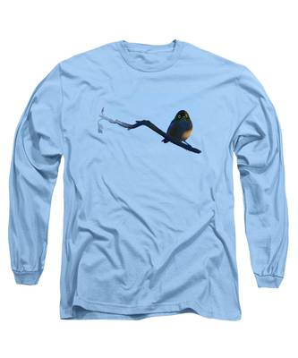Eye To Eye With Silvereye Long Sleeve T-Shirt