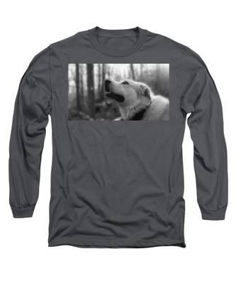 Bear Tooth Not Camera Shy Long Sleeve T-Shirt
