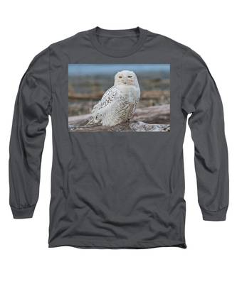 Snowy Owl Watching From A Driftwood Perch Long Sleeve T-Shirt