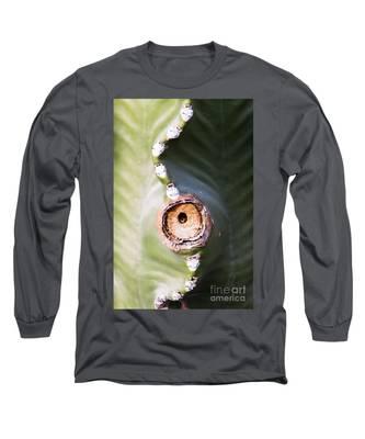 Sunlight Split On Cactus Knot Long Sleeve T-Shirt