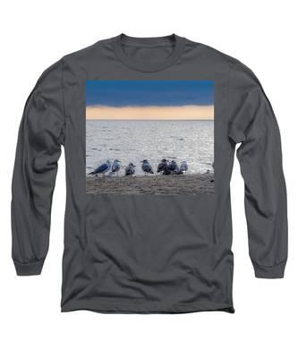Birds On A Beach Long Sleeve T-Shirt