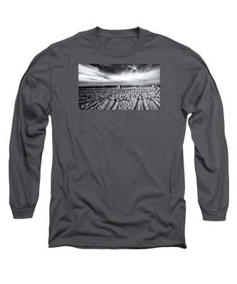 Gulls On Beach Long Sleeve T-Shirt